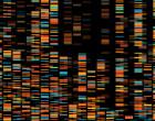 geny_genetika_test_DNA_vizualizace