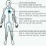 Význam mikroRNA v patofyziologii aterosklerózy a jejich