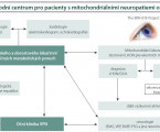 Leberova hereditární neuropatie optiku