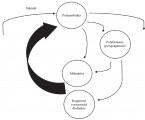 Polyfarmacie a malnutrice ve stáří