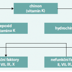 The current role of warfarin
