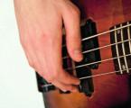 Patokineziologické změny v pohybovém aparátu u hráčů na basovou kytaru – význam prevence: série případů a literární přehled