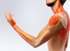 Opioidy v léčbě nádorové bolesti