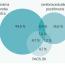 Periférne artériové ochorenie dolných končatín a dyslipidémia