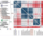 Molekulární aantigenní analýza hemaglutininu virů chřipky AH3N2 detekovaných vČeské republice vepidemické sezoně 2014/2015