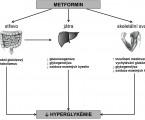 Laktátová acidóza asociovaná s metforminem – minireview na podkladě kazuistik