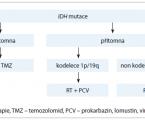 Controversy in the Postoperative Treatment of Low-grade Gliomas