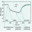 Syndrom diabetické nohy: význam MR spektroskopie lýtkových
