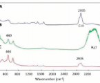 Raman label-free visualisation of Titanium dioxide nanoparticles uptake in BJ cell LINES