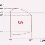 Význam nových parametrů kontraktility a tepové práce pro hodnocení srdeční funkce a prognózy