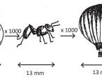 Nanočástice, nanotoxikologie, nanomedicína: definice pojmů, perspektivy v otorinolaryngologii
