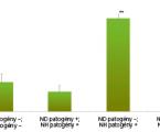 Mikrobiálna kolonizácia horných dýchacích orgánov a imunita u detí sadenoidnými vegetáciami