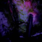 Korelace intenzity fluorescence s proporcionálním zastoupením maligních buněk ve tkáni při resekci glioblastomu s použitím 5-ALA