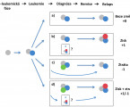 Next generation sequencing in acute myeloid leukaemia: new insights into the pathogenesis and development of leukemic clones