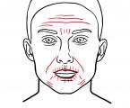 Přenos autologní tukové tkáně, lipomodelace prsu a lipofilling obličeje: současné standardy reflektující nové poznatky