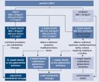 Komplexný prístup v manažmente pacienta s diabezitou