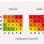 Stratifikace kardiovaskulárního rizika anové cílové hodnoty sérových lipidů