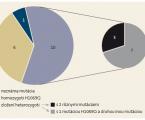 Wilsonova choroba v súbore detských pacientov na Slovensku