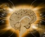 Sartany by mohly být přínosem v léčbě zhoršených kognitivních funkcí a schizofrenie