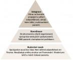 Integrovaná péče: východiska a teoretické vymezení konceptu