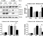 Phenylpropenoic Acid Glucoside from Rooibos Protects Pancreatic Beta Cells against Cell Death Induced by Acute Injury