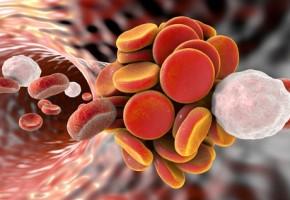 Účinnost statinů v léčbě pokročilejšího aterosklerotického onemocnění