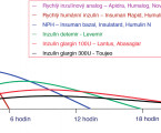 Type 1 diabetes mellitus treatment in seniors