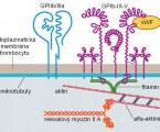 Dědičné trombocytopenie