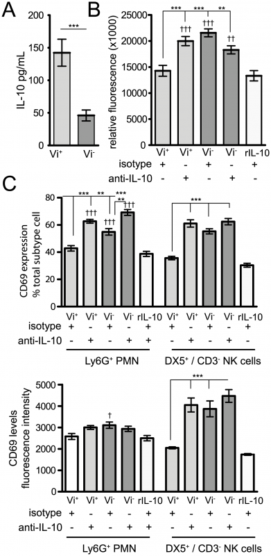Vi induction of IL-10 impacts on chemotaxis and activation of splenocytes <i>in vitro</i>.
