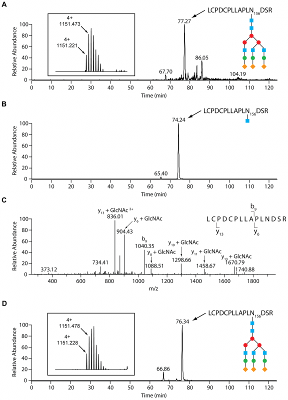 LC-MS analysis reveals an endo-β-<i>N</i>-acetylglucosaminidase activity of GpdG.