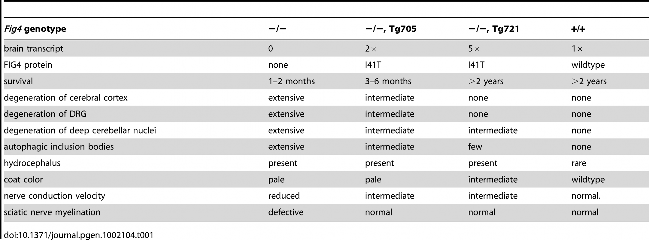 Rescue of various phenotypes of the <i>Fig4</i> null mice by the Tg705 and Tg721 I41T transgenes.