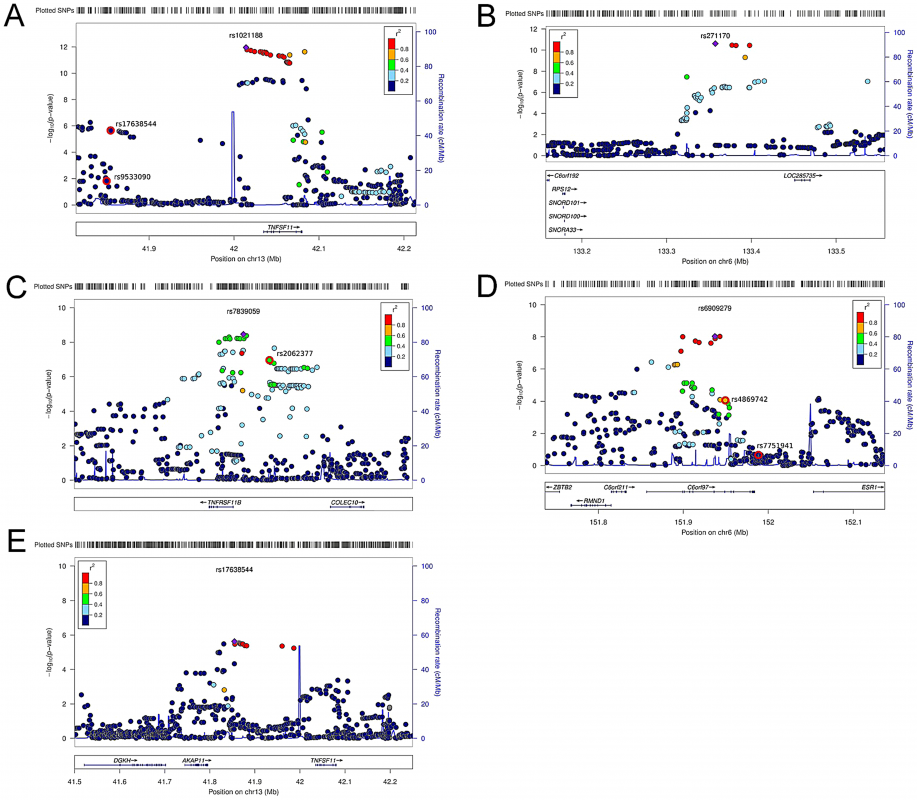 Regional association plots for the 5 independent signals from the discovery genome-wide meta-analysis of cortical vBMD.
