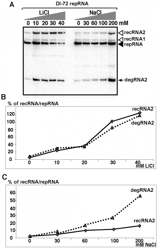 Salt-stress caused by LiCl and NaCl treatments enhances the formation and accumulation of recRNAs and degRNAs in yeast.
