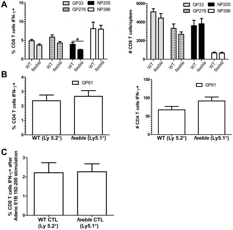 Defect in antigen specific <i>feeble</i> T cell responses is extrinsic.