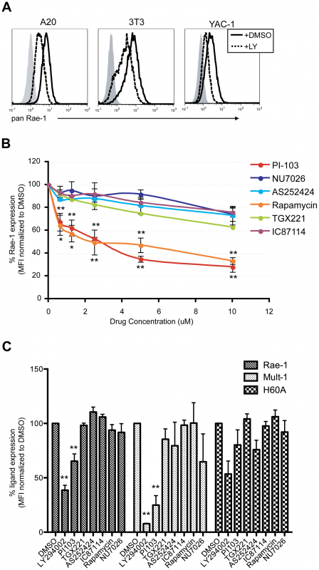 p110α PI3K is involved in the maintenance of RAE-1 and MULT-1 expression on transformed cells.