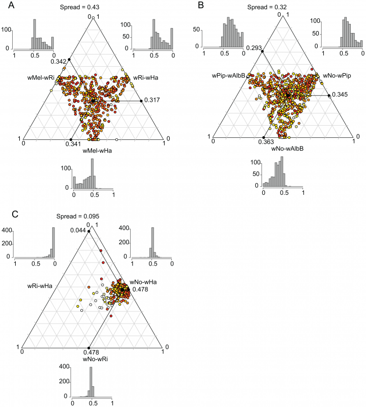 Ternary plot of sequence divergence levels at synonymous sites.