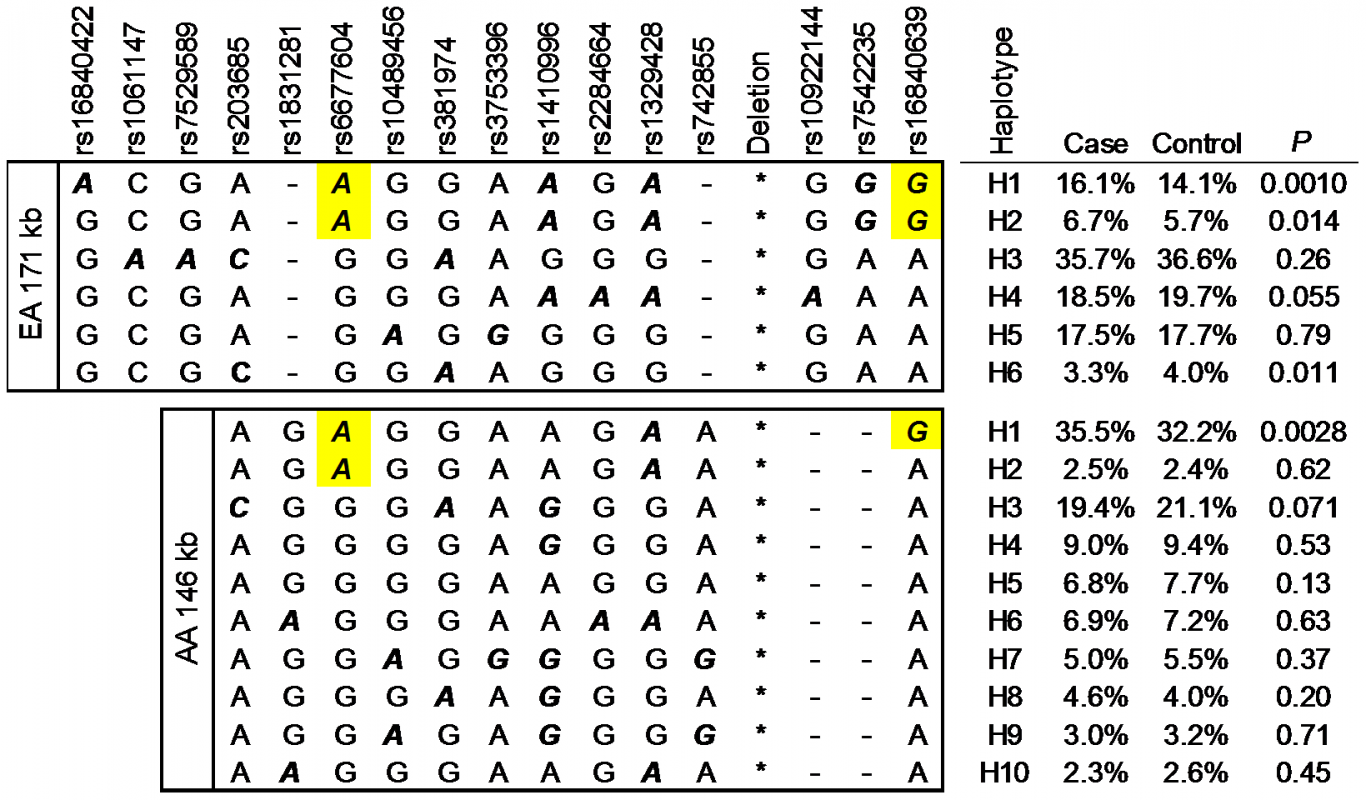 The minor allele of rs6677604 and rs16846039 tag risk haplotypes of SLE.