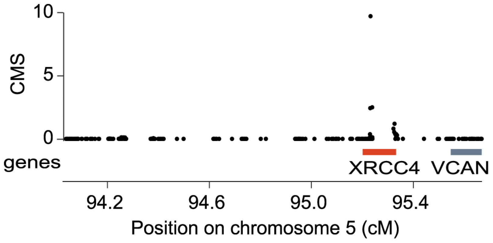 <i>XRCC4</i> is under positive selection in modern humans.