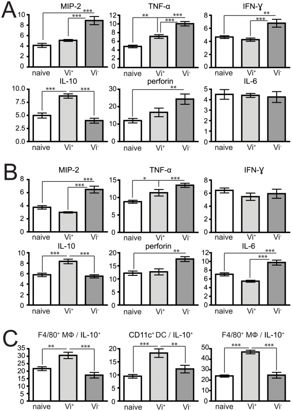 Vi expression also impacts on the cytokine profile of cells after <i>S.</i> Typhimurium infection.