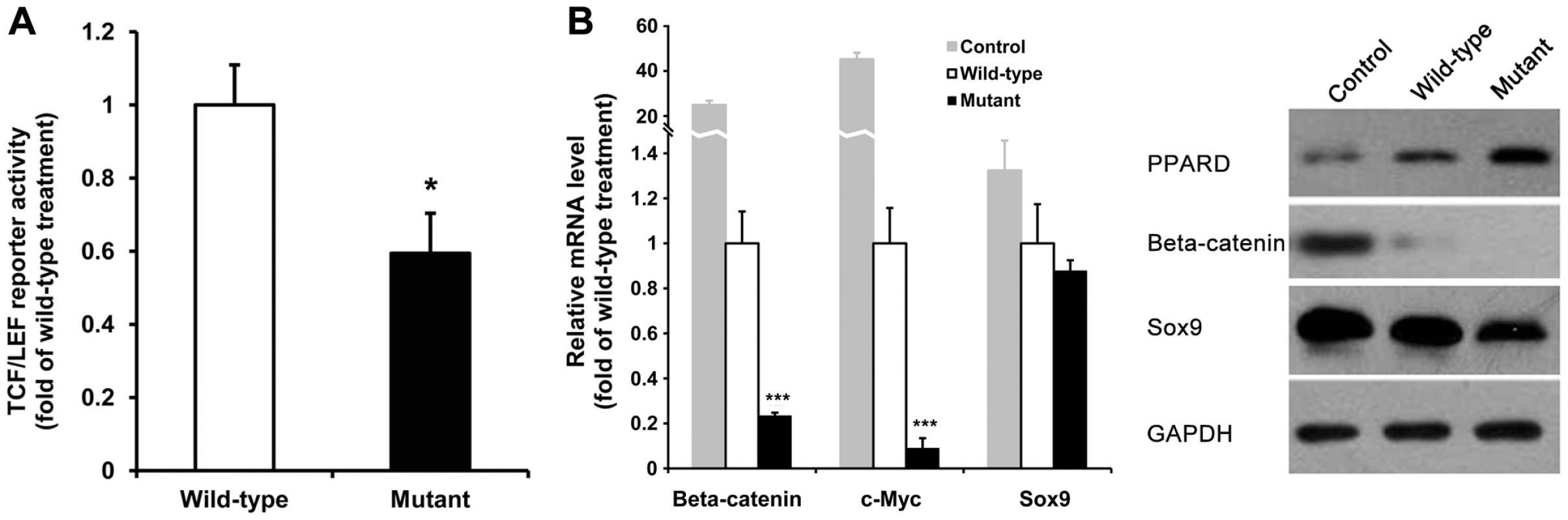 <i>PPARD</i> G32E mediates down-regulation of critical genes in the Wnt/<i>β-catenin</i> signaling pathway.