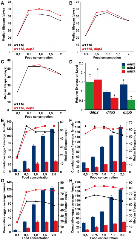 Dietary restriction in <i>Drosophila</i> is mediated by DILPs.