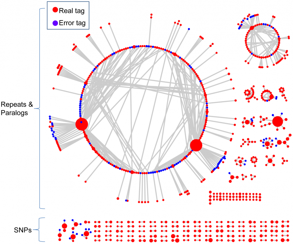 The networks of 802 representative tags from actual switchgrass data.