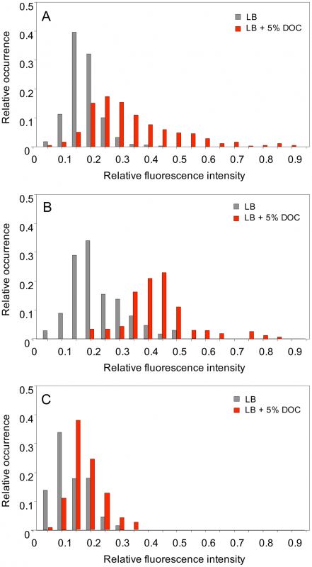 Levels of <i>osmY</i> gene expression in individual bacterial cells.