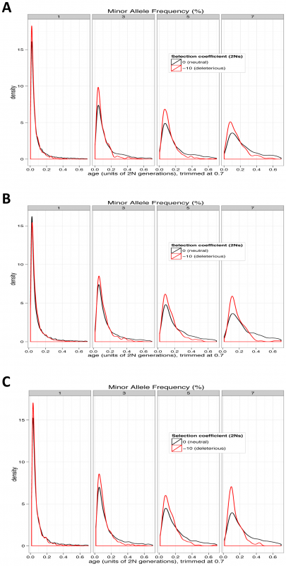 Age distributions for neutral and deleterious alleles from simulations.