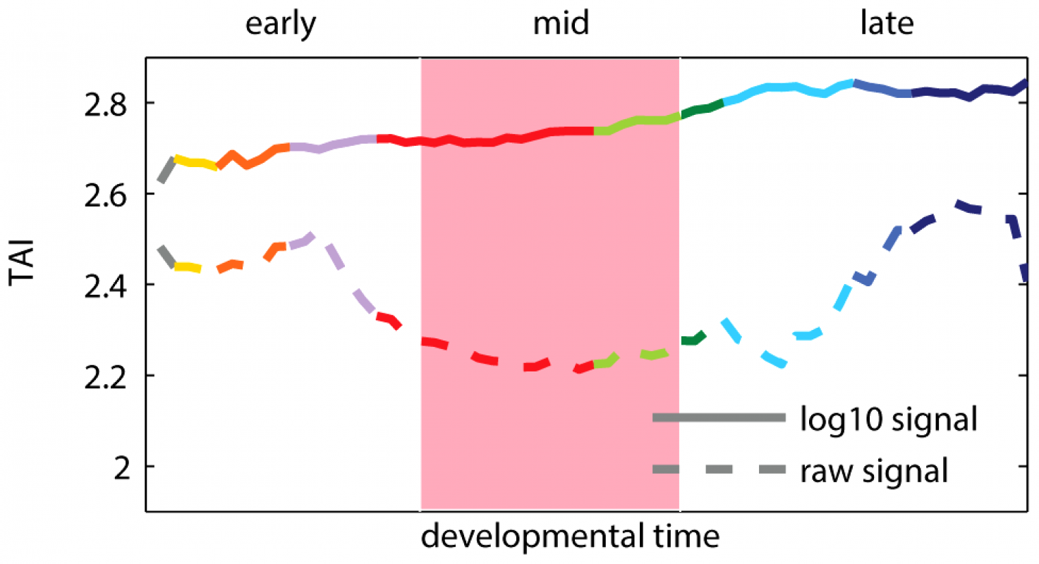 Transcriptome age index (TAI) using raw and log-transformed expression signal intensities.