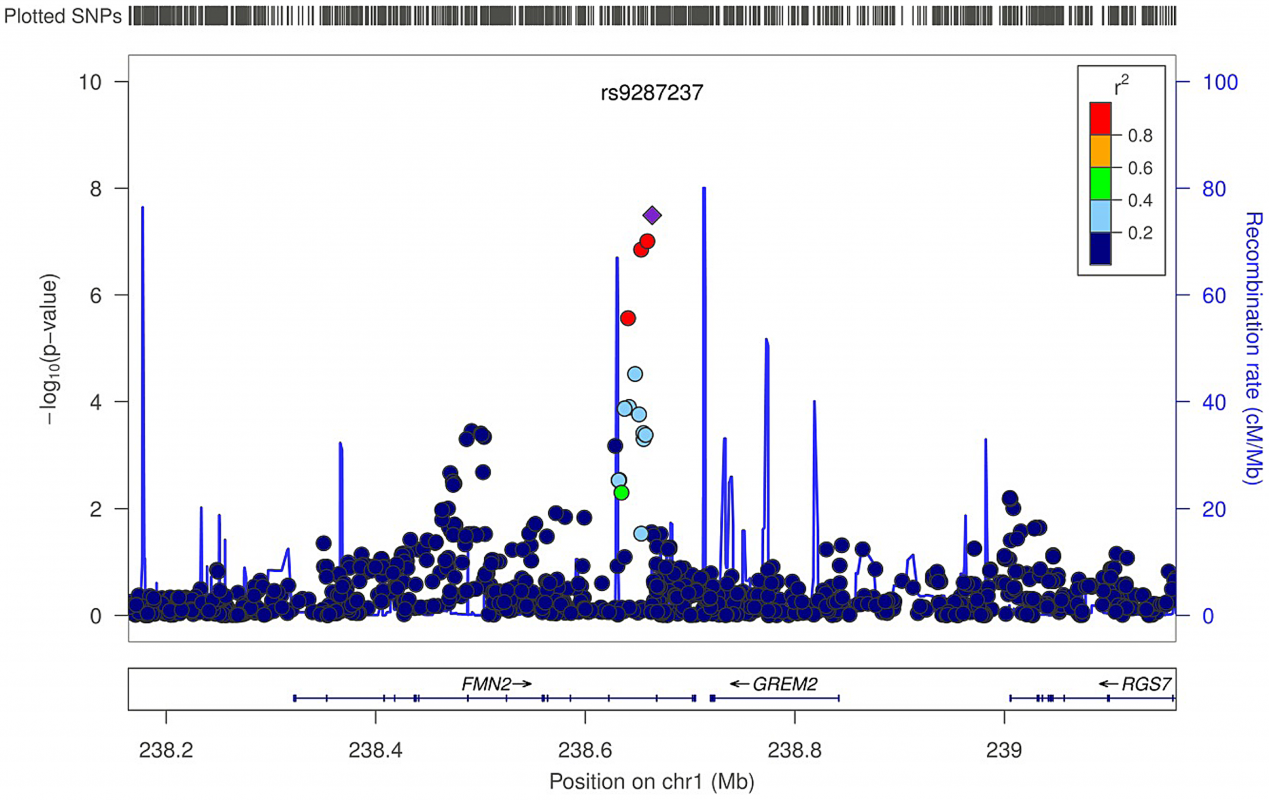 Regional association plot for rs9287237 of the discovery genome-wide meta-analysis of trabecular vBMD.