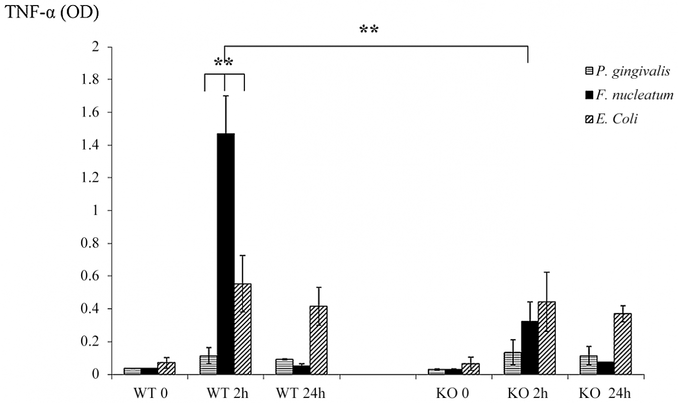 Cytokine profiles in challenged chambers.