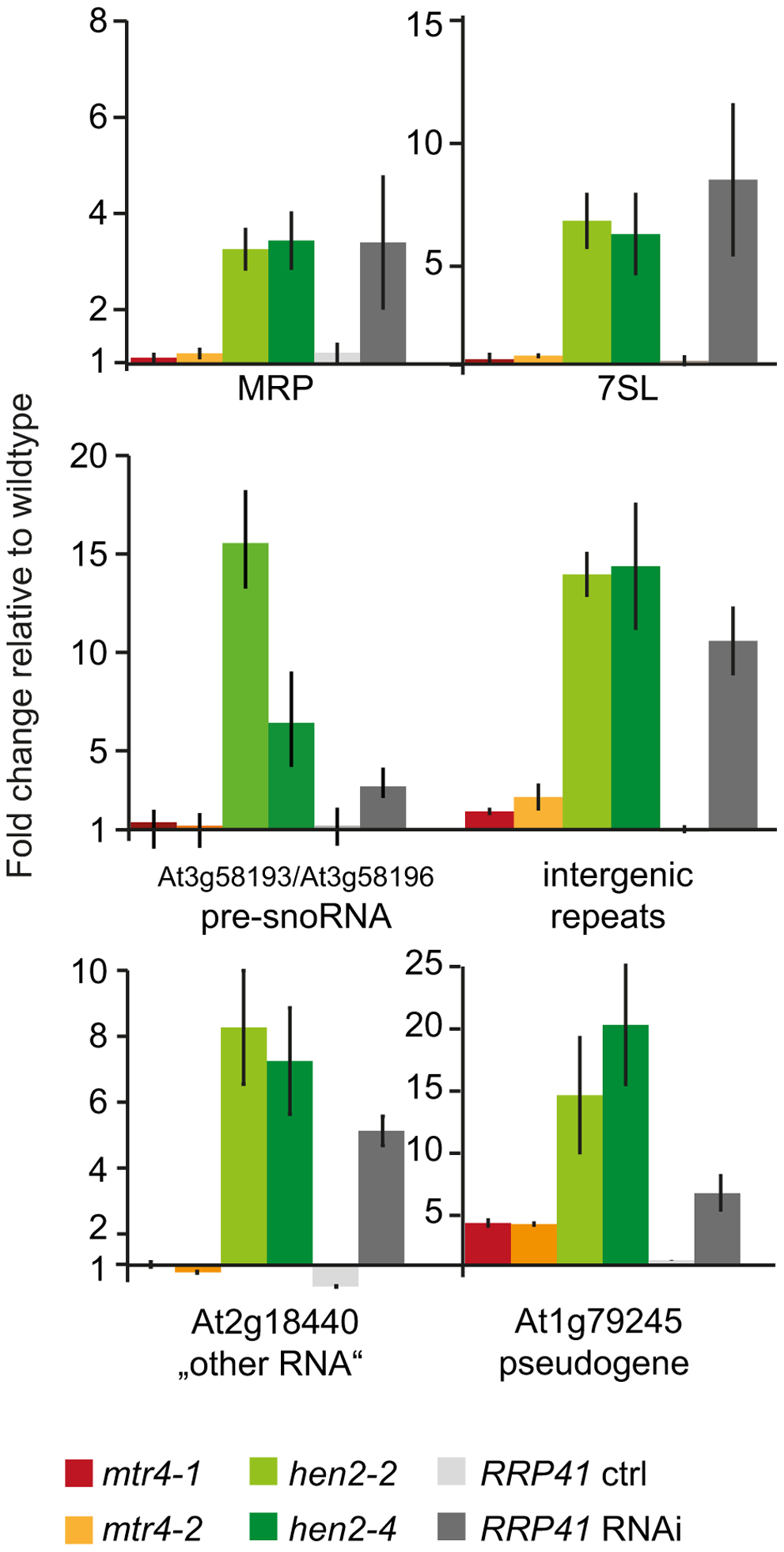 Loss of HEN2 results in over-accumulation of selected exosome targets.