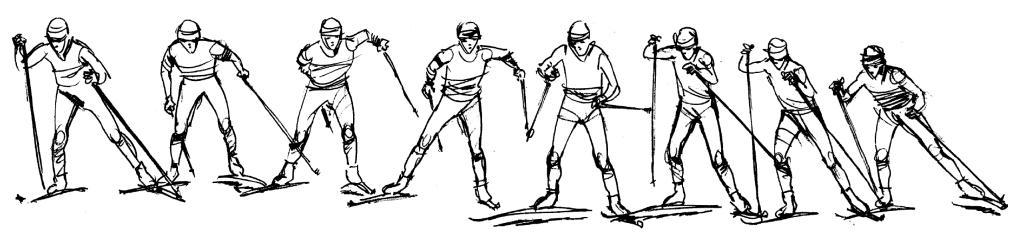 Průběh pohybu při asymetrickém oboustranném dvoudobém bruslení na lyžích, orientovaném na pravou stranu.
