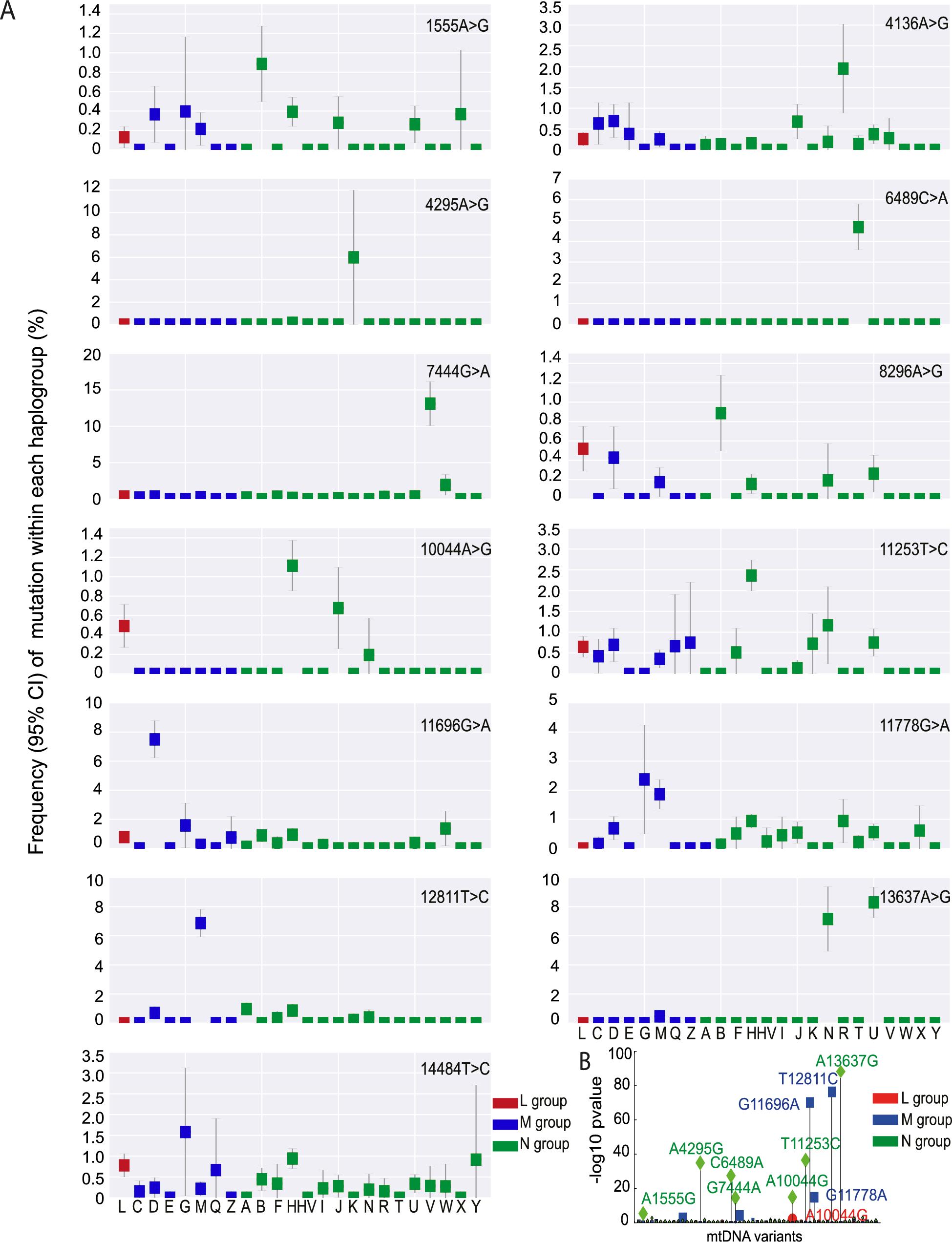 Frequency of disease causing mtDNA mutations in each macro-haplogroup.